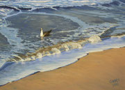 Seagull at the Beach, Pastel on Pastelmat, 50 x 70 cm, 2012, Private Collection