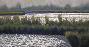 Marsh, Pastel on Pastelmat, 32x60cm, 2012, Private Collection
