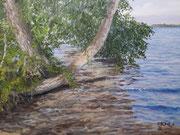 Am Ufer Plöner See, Öl auf Leinwand, 60x80cm, 2021