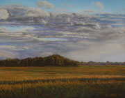 Abendhimmel über Marschland,  Pastel on Pastelcard, ca. 40x50cm, Private Collection