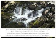 Der Fluss 1