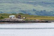 Wegelagerer auf Isle of Mull
