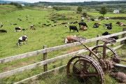 Bauernbof auf Mull
