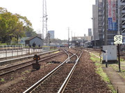 高徳線 徳島駅構内へ 1~4番線へと分岐します