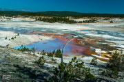 Norris Geyser Basin - Yellowstone National Park - 2016