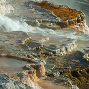 Upper Terrace - Mammoth Hot Springs - Yellowstone National Park - 2016