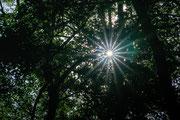 Strahlenkranz der Mittagssonne
