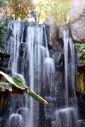 Wasserfall im Aquarium Can Pastilla