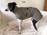 Frida - Hundemantel (Außen Baumwolle/Nylon - Grau meliert // Innen Microfaser Teddy - Beige // Kragen - Fellimitat Schwarz) Regenabweisend