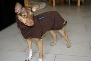 Shary - Hundepullover mit Snood in Kaffee