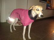 J ádore - Regenmantel mit Bauchgurt  in Pink