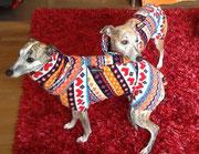 Frida & Deli - Windhundpullover mit Snood's im Norweger-Design