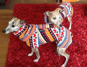 Frida & Deli - Windhundpullover mit Snood's im Norweger-Design