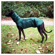 Windhund Pullover mit Snood - Grün
