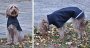 Hundedame Taxi - Hundemantel mit Gurt - Aussen Softshell // Innen: Fleece