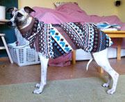 Ilvas - Windhundpullover mit Snood (Norweger Stil)