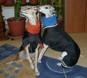 Bandit & Jazzy  (Regenmäntel mit Bauchlatz)