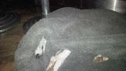 Annie in ihrer Kuschelhöhle im Lammwoll Optik