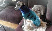 Windhundpullover mit Snood - Polarfleece