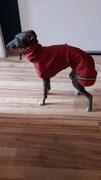 Windspielchen Bella - Regen/Windjacke unterlegt mit Netzstoff (Mantel) in Rot