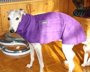 Lady - Windhundpullover mit Snood - Lila