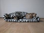 "Sam (Whippet) & Pepper (Windspiel) in neuer Kuschelhöhle ""Zebra"""