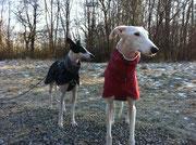 Deli (in Bordeaux :) & Twyla (in Schwarz :)