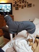 Hundemäntelchen Regenabweisend (Brustlatz & Reflektoren)- Aussen: Nylon Grau // Innen: Fleece Grau
