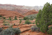 m Snow Canyon