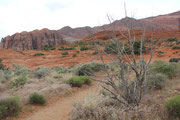 Im Snow Canyon
