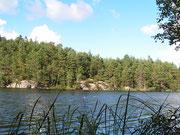 Gotlandsag vid Bergsjön