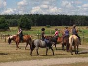 Reiterferien Sommer 2013