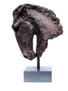 Horse's head 2