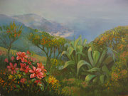 Paesaggi - olio su tela dimensione 60 x 80