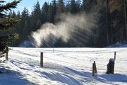 Cannoni da neve