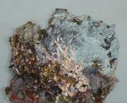Maria Vogl, Skorpionfisch, 23x19, Öl auf Palette