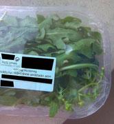 Salatpackung, in der 2009 Senecio vulgaris / Gemeine Kreuzkraut nachgewiesen wurde