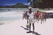 Seychelles , pêcheur