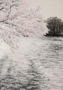 8《桜と池》  B5/¥4,000(税込)