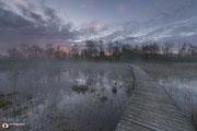 Landschapsfotografie: Beekbergerwoud+nabij+Klarenbeek,+Gelderland