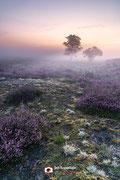 Landschapsfotografie: 'Little world' op de Zuiderheide nabij Hilversum (Noord-Holland, Nederland).