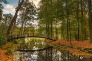 Autumn, een herfstfoto van bospark Huis Voorstonden te Brummen.