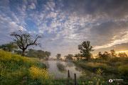 Landschapsfotografie: 'Awaking morning.', gefotografeerd in een natuurgebied te Schalkwijk