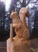 Eichhörnchen beim Balmeneggli