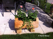 Blumentrog bepflanzt