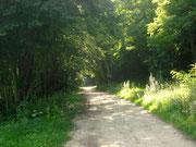 Jacobsweg Richtung Kleiner Trepliner See