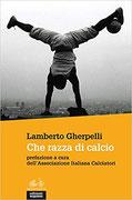 """""""Che razza di calcio"""" di Lamberto Gherpelli (Edizioni Gruppo Abele, 2018)"""