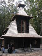 Шевченківський гай. 12.10.2013