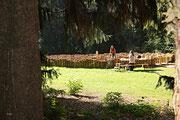 NK_Stadtpark_2013-09-07_030 - Noch ein Blick zum Labyrinth.