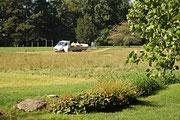 NK_Stadtpark_2013-09-07_003 - Blick vom Jahnweg...